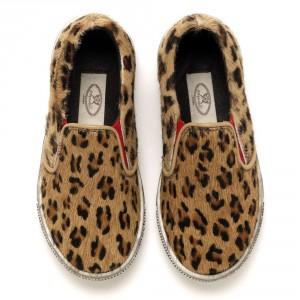 Marco leopard front